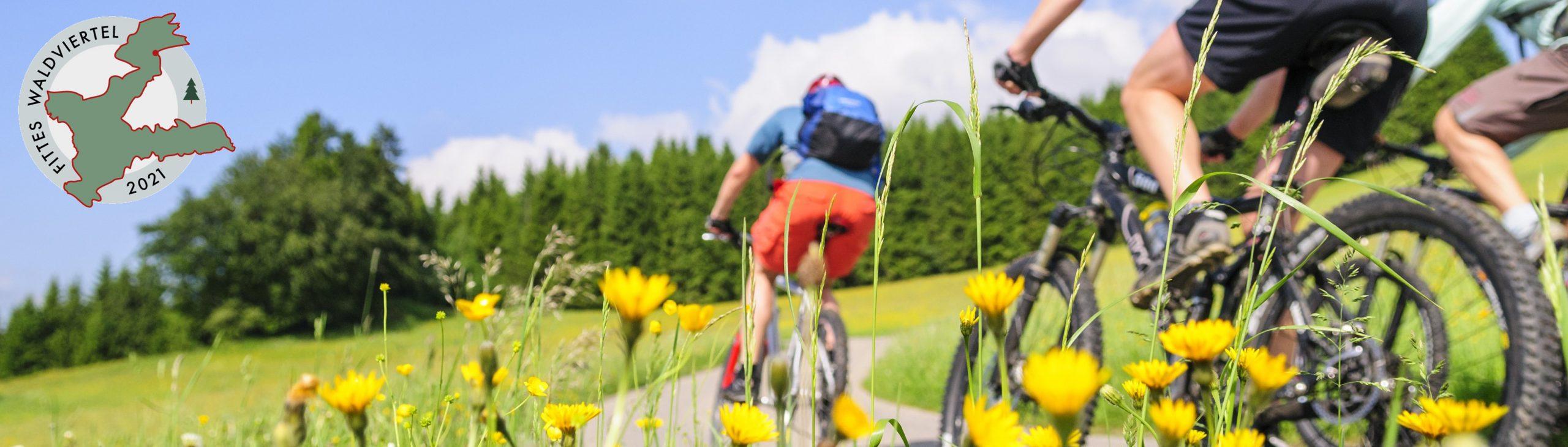 Mountainbike_sehrschmal_LOGO